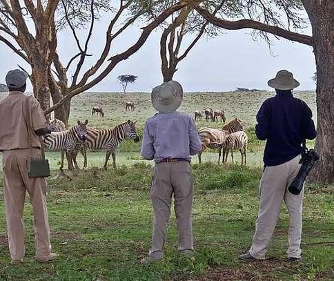 Royal Bush Safaris KE image 5