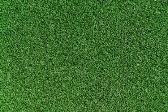 Artificial Turf Grass25mm  Carpet image 2