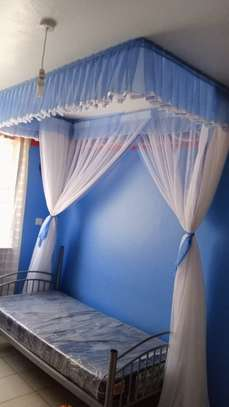 Rail Shears Mosquito Nets image 1