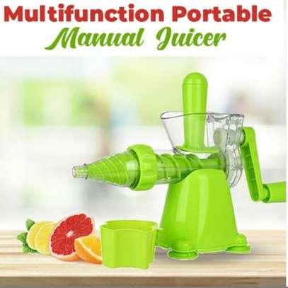 Fruit manual juicer image 1
