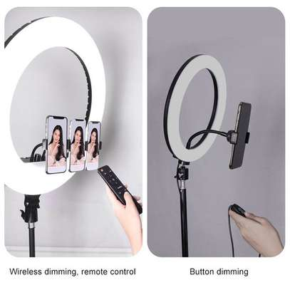 14 Inches Ring Light + 2.1 Metres Stand image 1