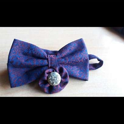 Bowtie and lapel image 1