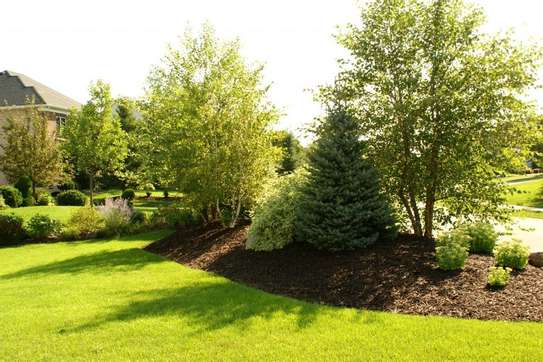 Bestcare Gardening Services | Professional Landscapers & Gardeners.Quality, Reliability & Affordable Rates. image 7