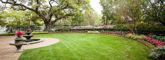 Professional Landscaping at - Affordable Prices. Free Quotes