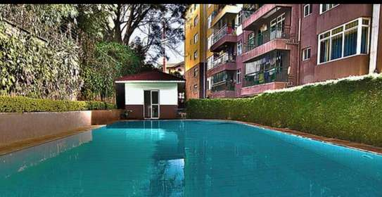 Apartment For Rent in Lavington image 5
