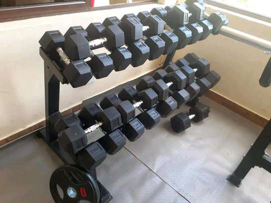 Fixed rubber dumbbells image 1