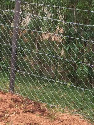 Chain Link Fence image 7