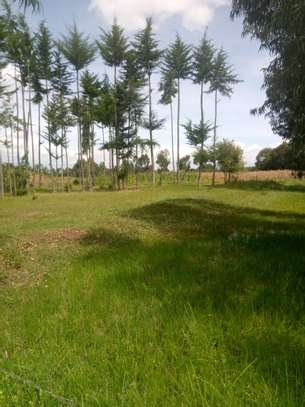 Land for Lease in Kinangop image 1