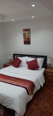 2 bedroom fully furnished and serviced westlands school lane image 6