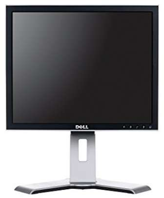 Hp/Dell 17 Inch Monitor