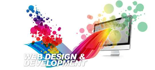 Premium Web Design  DEAL! image 1