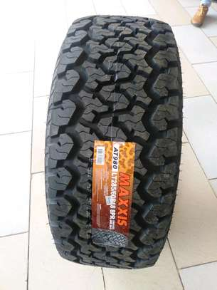 Maxxis Tyres of your budget image 3