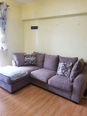 Luxurious Couch