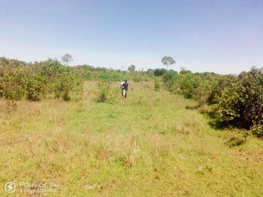 Nanyuki - Agricultural Land, Land
