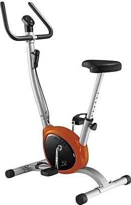 Domestic Exercise spin bike image 1