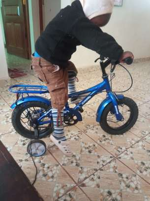 I am selling a bicycle for kids/chickens