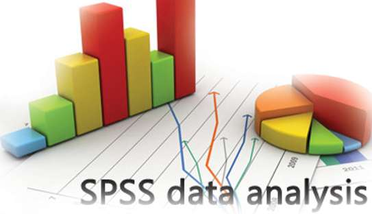 Data Analysis Using SPSS (Academic Projects and Surveys) image 4