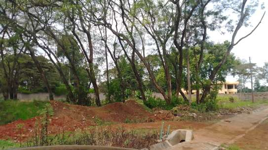 0.5 ac residential land for sale in Thome image 7