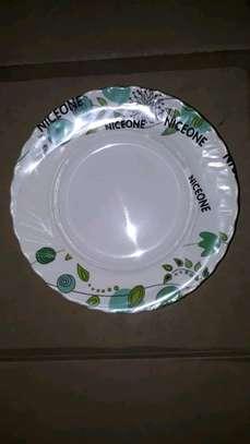 Melamine  Dinner Plate image 7