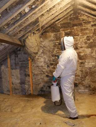 Best Fumigation & Pest Control Services Company Nairobi | Call in our experts today. We Are 24/7 image 1