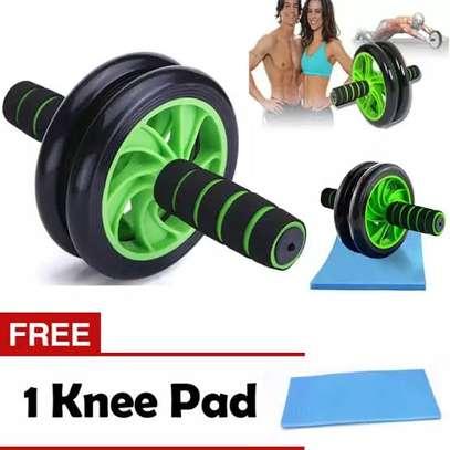 Gym roller image 2