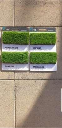 The New Carpet: Artificial Grass Carpet image 9
