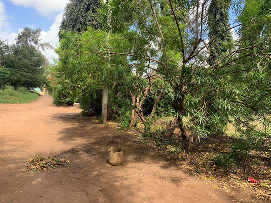 Malindi Town - Residential Land, Land image 7