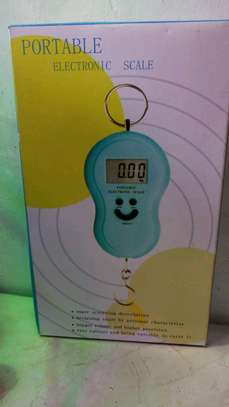 Portable Electric Scale image 1