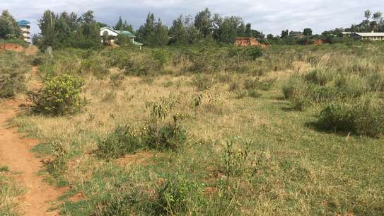 Prime land for sale in Nanyuki Muthaiga image 2