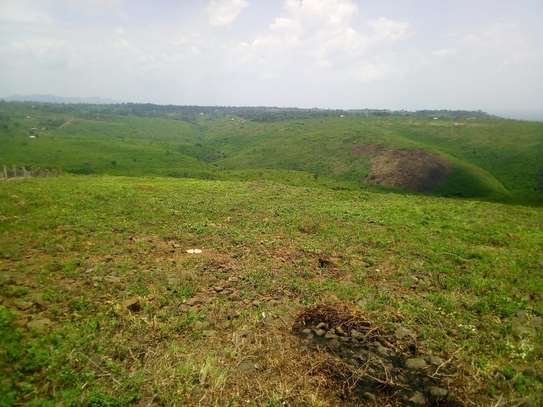 0.25 ac land for sale in Riat Hills image 7