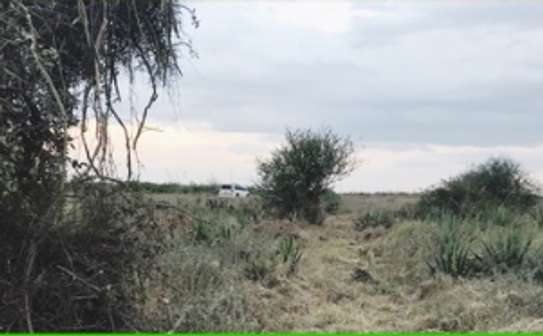 1 acre land for sale image 1