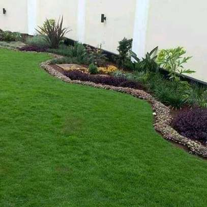 Landscaping(Commercial &  Residential image 4