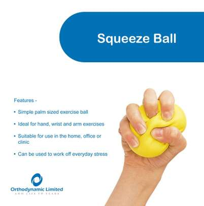 Squeeze ball (stress ball) image 1