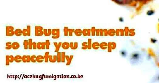 Acebug Fumigation Company image 7