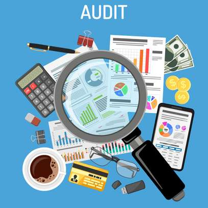 Accounting, Auditing, Taxation, Financial Investigations