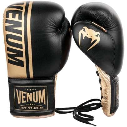 16 OZ boxing Gloves image 1