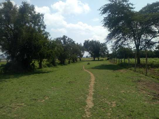 1acre land for sale in Naivasha image 8