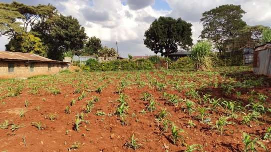 0.25 ac land for sale in Kawangware image 9