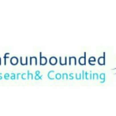 Research & Information Consultancy Services