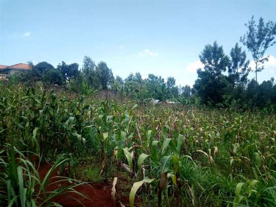 Gatundu South - Residential Land, Land image 9