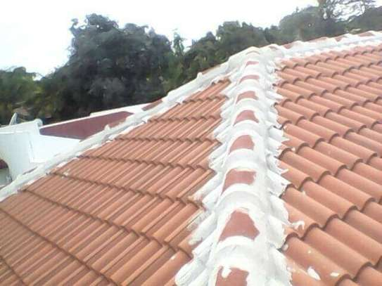 Waterproofing, Damp Proofing and Painting Services. Guaranteed Specialists. image 8