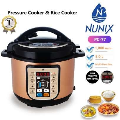 Top Notch Electric Pressure Cookers 5L