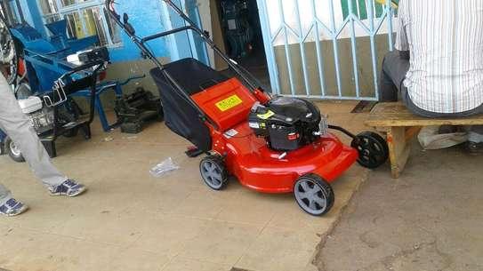 B &S lawn mower in Kenya