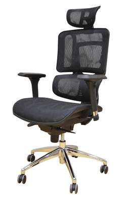 Genuine Orthopedic chair for those with back problem