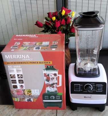 Professional commercial Blender Merrina image 2
