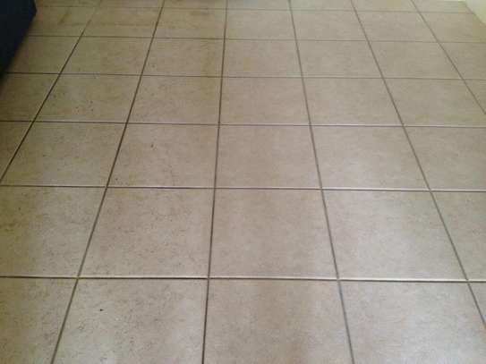 NEED PROFESSIONAL  CARPET CLEANING,TILE & GROUT CLEANING & UPHOLSTERY CLEANING? GET A FREE QUOTE TODAY. image 3