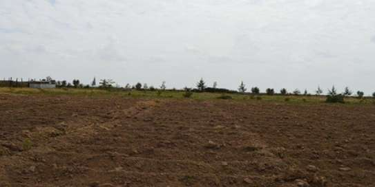 2000 Acres For sale Kabarak area in baringo County image 2