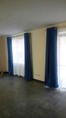 Curtains and Matching sheers image 4