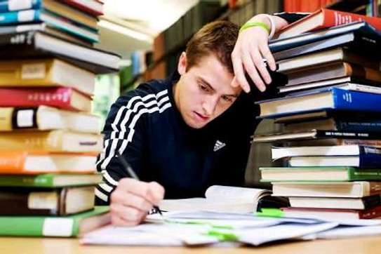 Thesis, proposals, projects, business plans, essays and report writing