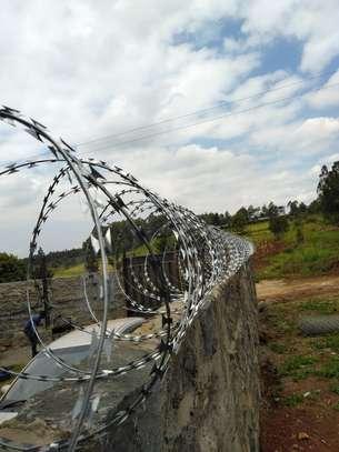 Double Galvanized Razor Wire Supplier image 3